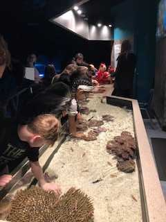 7th Grade Aquarium Trip 2019