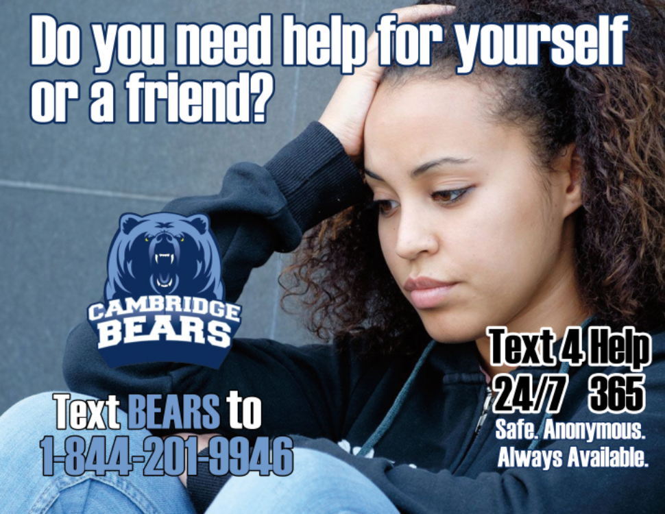 Text BEARS to 7-844-201-9946